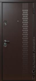 фото входной двери Фьорд (Стальная Линия) снаружи